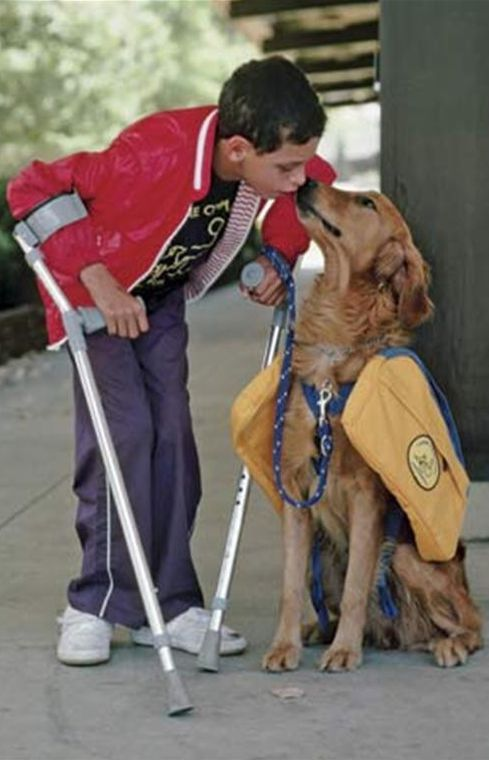 Service dog with affectionate owner • photo: sema_trnty on Flickr
