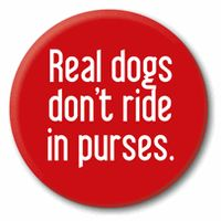 Sounds funny but its true! Dogs are made to walk, not to ride in purses.
