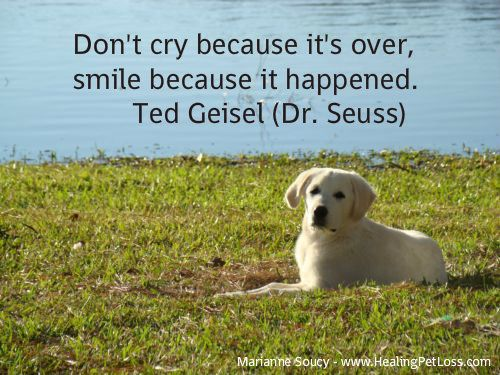 Subscribe to the Healing Pet Loss Podcast in iTunes for practical steps for coping with pet loss & comforting messages of love and peace from animals in the afterlife