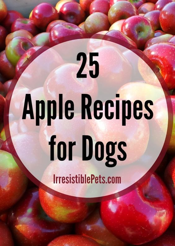 Thanks for including my Sweet Potato and Apple Pupcake #recipe in your 25 Apple Recipes for Dogs Round-Up, @Irresistible Pets!