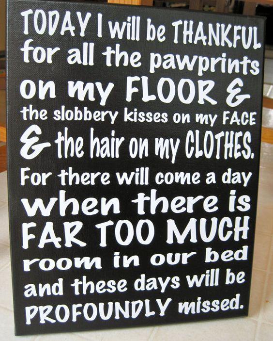Today I Will Be Thankful for Pawprints by makersgonnamake on Etsy
