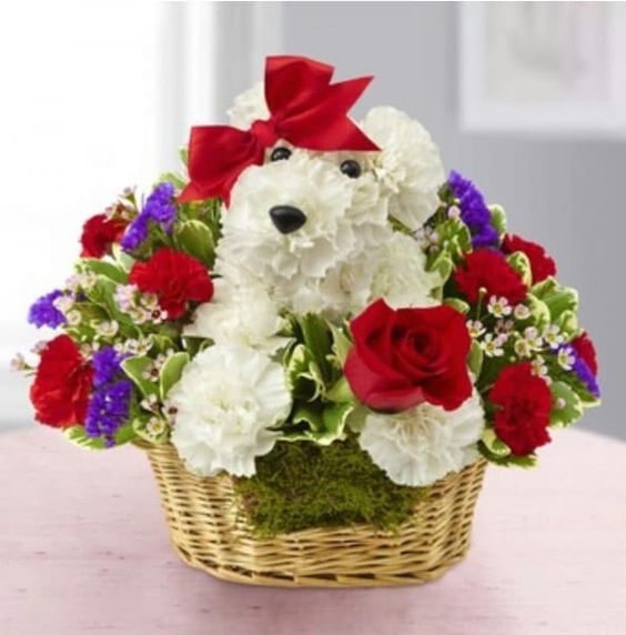 Valentine's Day Gift Ideas for Dog Lovers   Guff