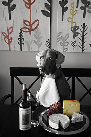 Weim and Cheese