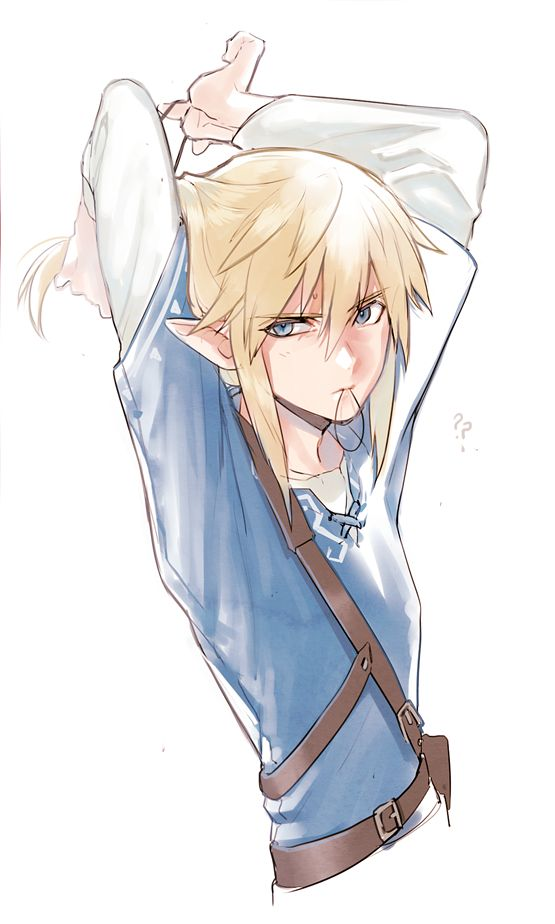 What? It's not my fault that you fell into the water! *sighs*  it was, but just a little, Link!!!
