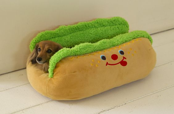 wiener dog in a bun bed! That is one HOT DOG!