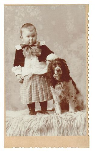YOUNG BOY WITH SPANIEL DOG - ANTIQUE PHOTO