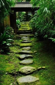 苔の石段 京都東山