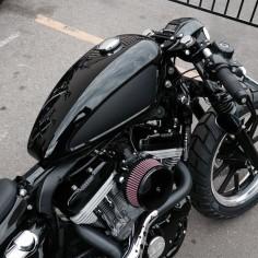 2010 Cafe Sportster by Robert Landy for Black Bike.