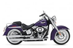 2014 Harley-Davidson FLSTN Softail Deluxe