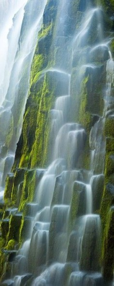 5 waterfalls near Portland, OR - just 15 minutes outside of the city. To learn more, checkout this great article from USA Today.