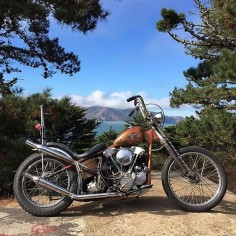 60 weight and high test. — chopcult: when there are no waves hit