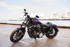 A purple Sportster. Yum! Part of Harley's 2014 color collection!