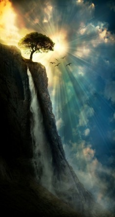 A tree on the edge of a beautiful cliff with a rushing waterfall. The sun's rays burst out from behind the scene. The birds are a nice touch too. I love this! Gorgeous #photography