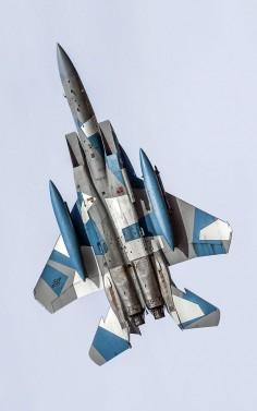 Aggressor F-15C Eagle