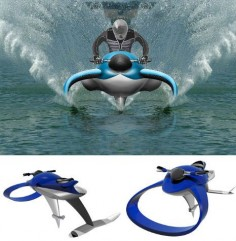 amazing-boats-dolphin-hydrofoil
