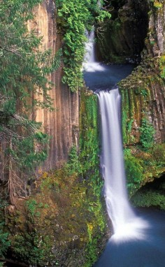An ancient waterfall hidden in the Oregon woods. Need to put this on the 2014 summer to do list.