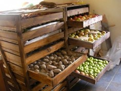 An idea for root cellar storage