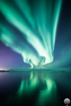 Aurora Borealis - Kleifarvatn, Iceland. this is beauty in the fact that it happens naturally, Earth created it not humans and its something you don't get to see everyday all the time which makes it even more precious.