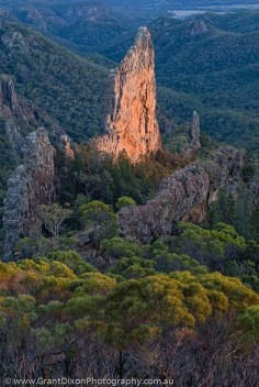 AUSTRALIA, NSW, Coonabarabran, Warrumbungle National Park. The Breadknife, a dyke, the solidified erosional remnants of the internal plumbing of an ancient volcano, from Grand High Tops, sunrise.