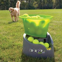 Automatic ball thrower. For the lazy days!