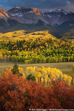 Autumn colors in the San Juan Mountains, Colorado