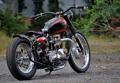 beautiful custom Triumph