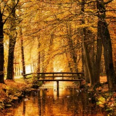 Bridge over water in Autumn / Fall  Reminds me of Anne of Green Gables