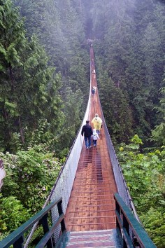 Capilano suspension bridge Canada This was a bucket list item, I'm afraid of heights! It was awesome!