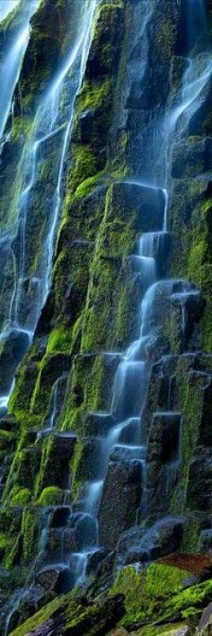 Cascade|Proxy Falls, Oregon USA