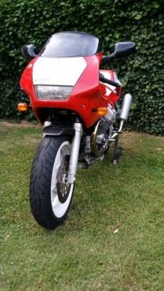 Daytona Corse 27/66