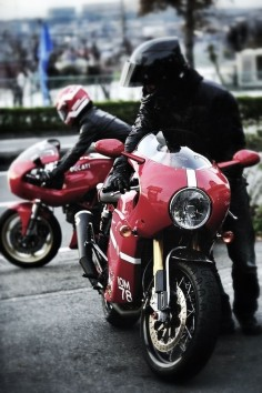 Ducati motorcycles  Free Pinterest Perfection E-book (Make Money)