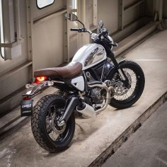 "Ducati Scrambler Legend 62 Bianco ""Project Rebellion"" custom by Ducati Scrambler Thailand"