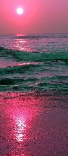 Exquisite photography - pink, sunset beach.