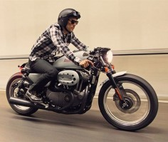 Fancy - Harley-Davidson Nightster Café Racer By Deus