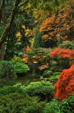 Far Eastern tranquility in the middle of the big city - Japanese gardens, Portland, Oregon