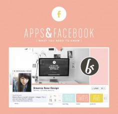 for bloggers : facebook apps guide