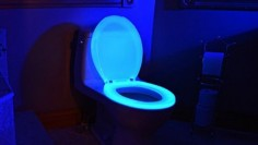 Glow in the dark toilet !!!