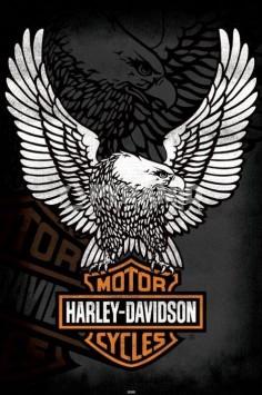 harley davidson quotes | Harley Davidson (Eagle) Poster