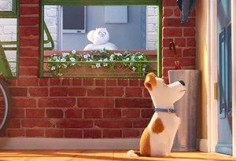 How Secret Life of Pets Movie Is Making Home Automation & Security Mainstream
