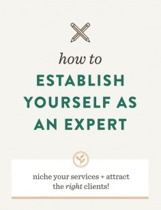 How to Establish Yourself as an Expert | Spruce Rd.