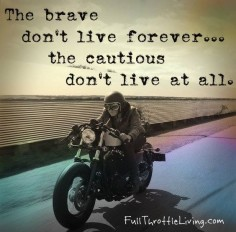 #inspirationalsayings  The brave don't live forever but the cautious don't live at all #qoutes