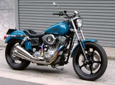 japan harley dyna cool