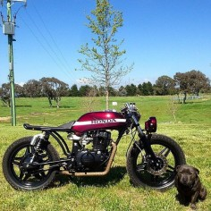 Man and woman's best friends. @jay_rawlings5's Honda CB400 and pup. Check out the lines on the bike with the seat and lowered headlight. Thank you Jay!  #dog #croig #caferacersofinstagram