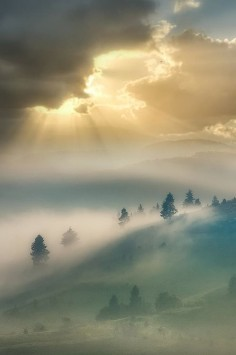 morning mists