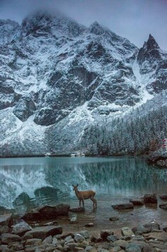 Morskie Oko Lake // Mnich Mountain // Tatras // Poland