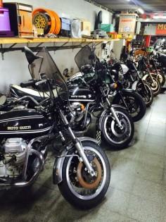 Moto Guzzi #VRAmotors