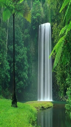 Nature - Waterfall - Lake Plitvice National Park in Croatia.: