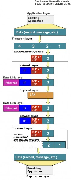 Networking OSI TCP IP UDP ARP DNS