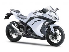 ninja 250. white. I thought I wanted all black but