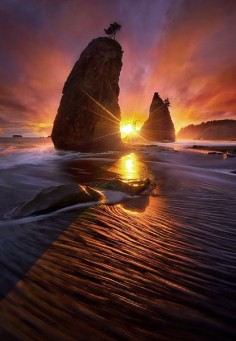 Olympic coast sunset, Washington - US